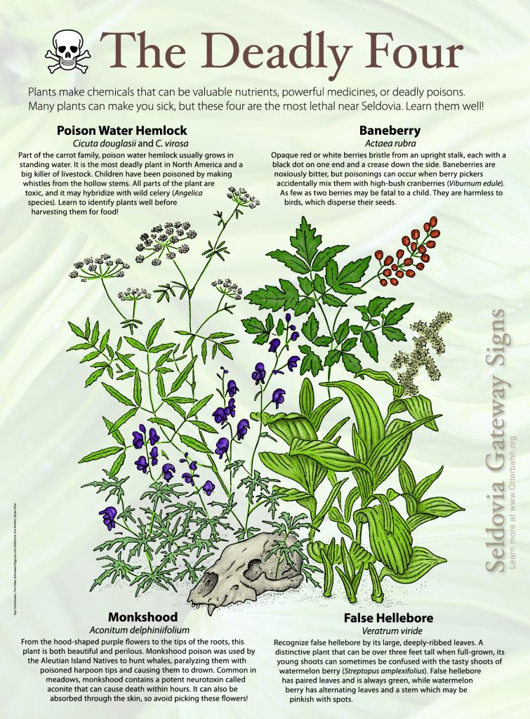 Poisonous Plants-01