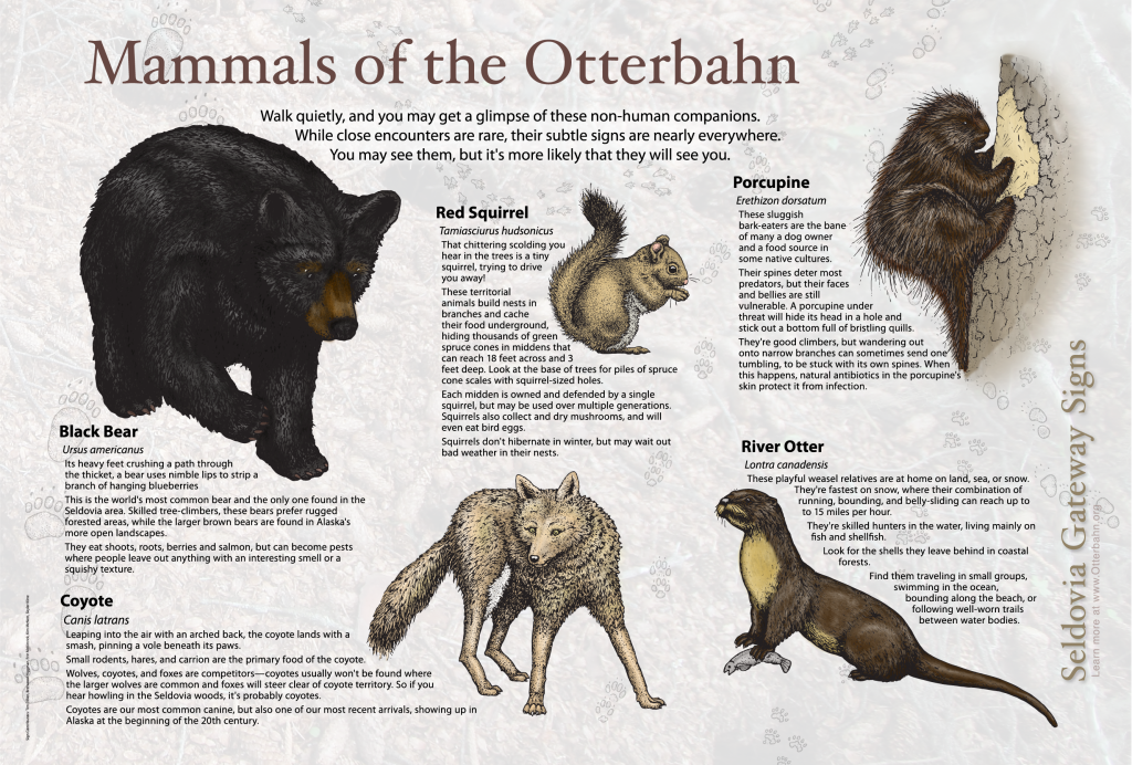 Mammals of the Otterbahn-01